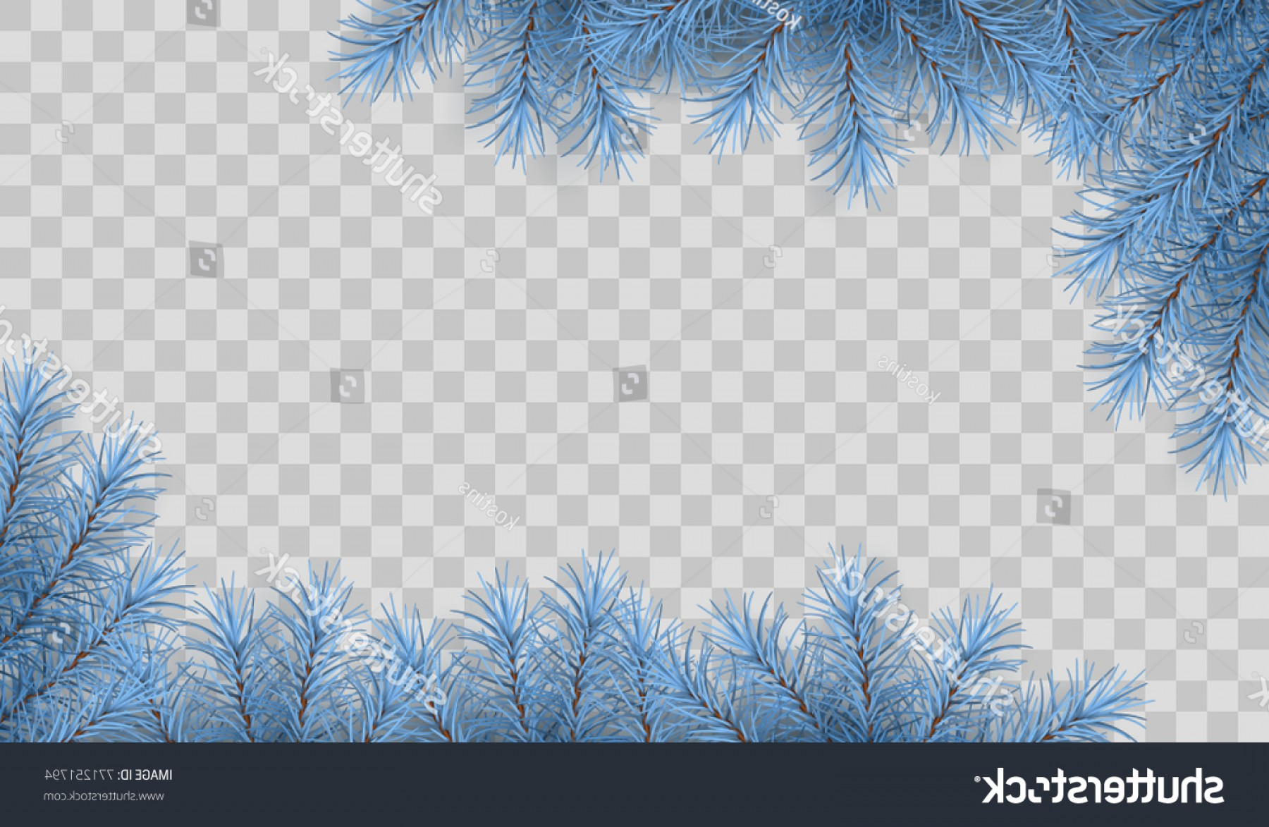 Frost Border Vector: Pine Tree Vector Spruce Border Branches