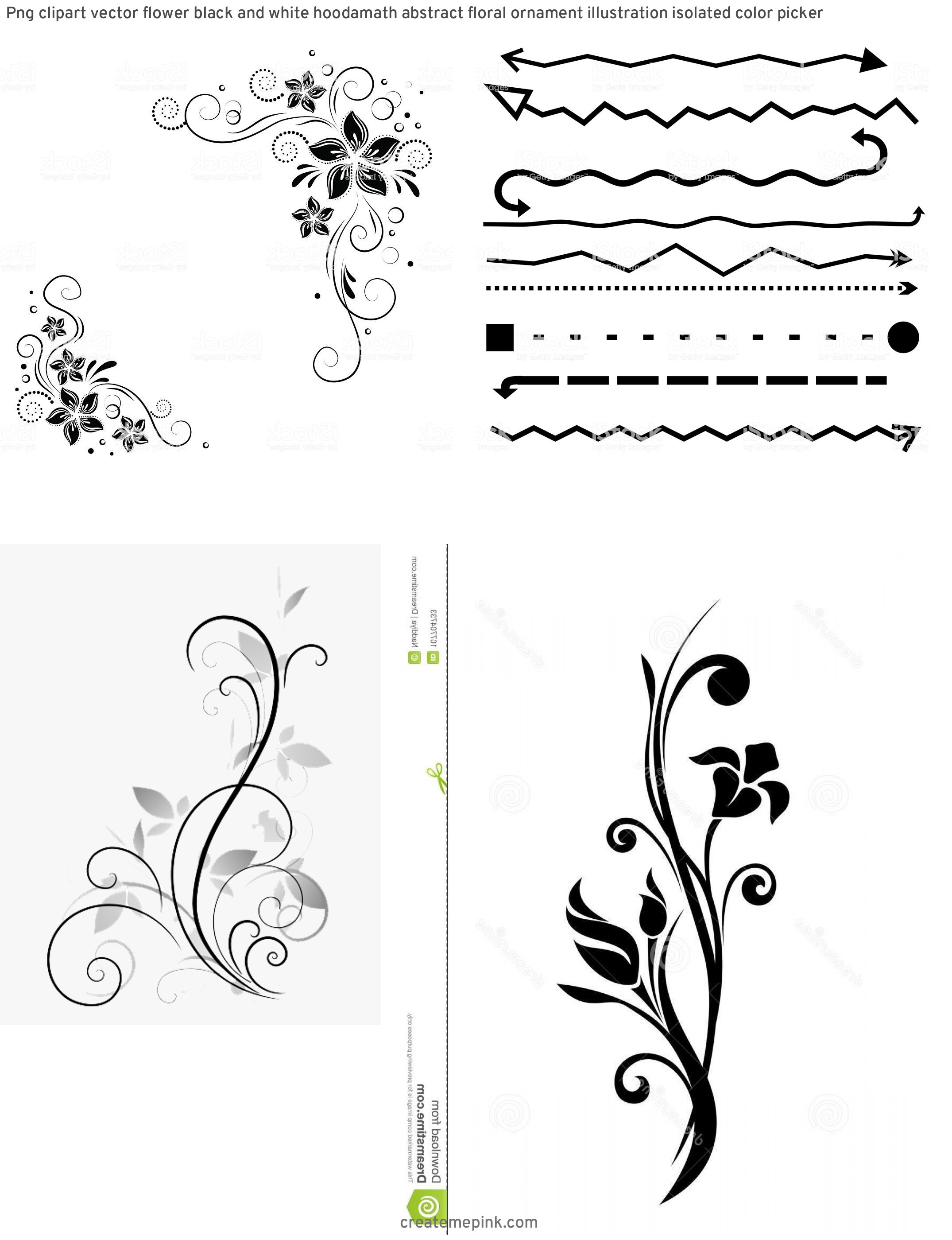 White Clip Art Vector Design: Png Clipart Vector Flower Black And White Hoodamath Abstract Floral Ornament Illustration Isolated Color Picker