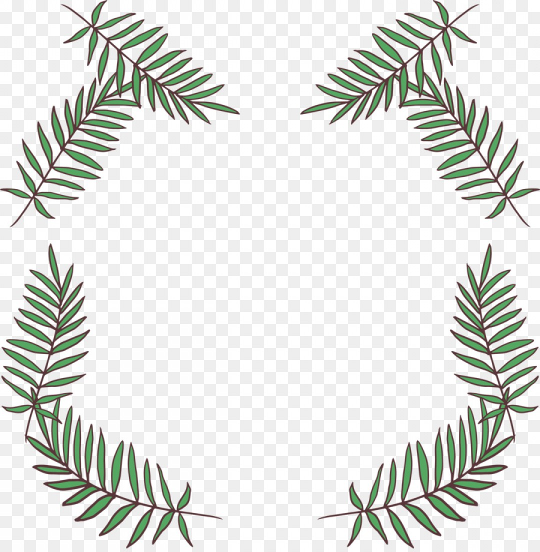 Pine Leaf Vector: Png Fir Leaf Pine Needle Leaf Decorative Frame