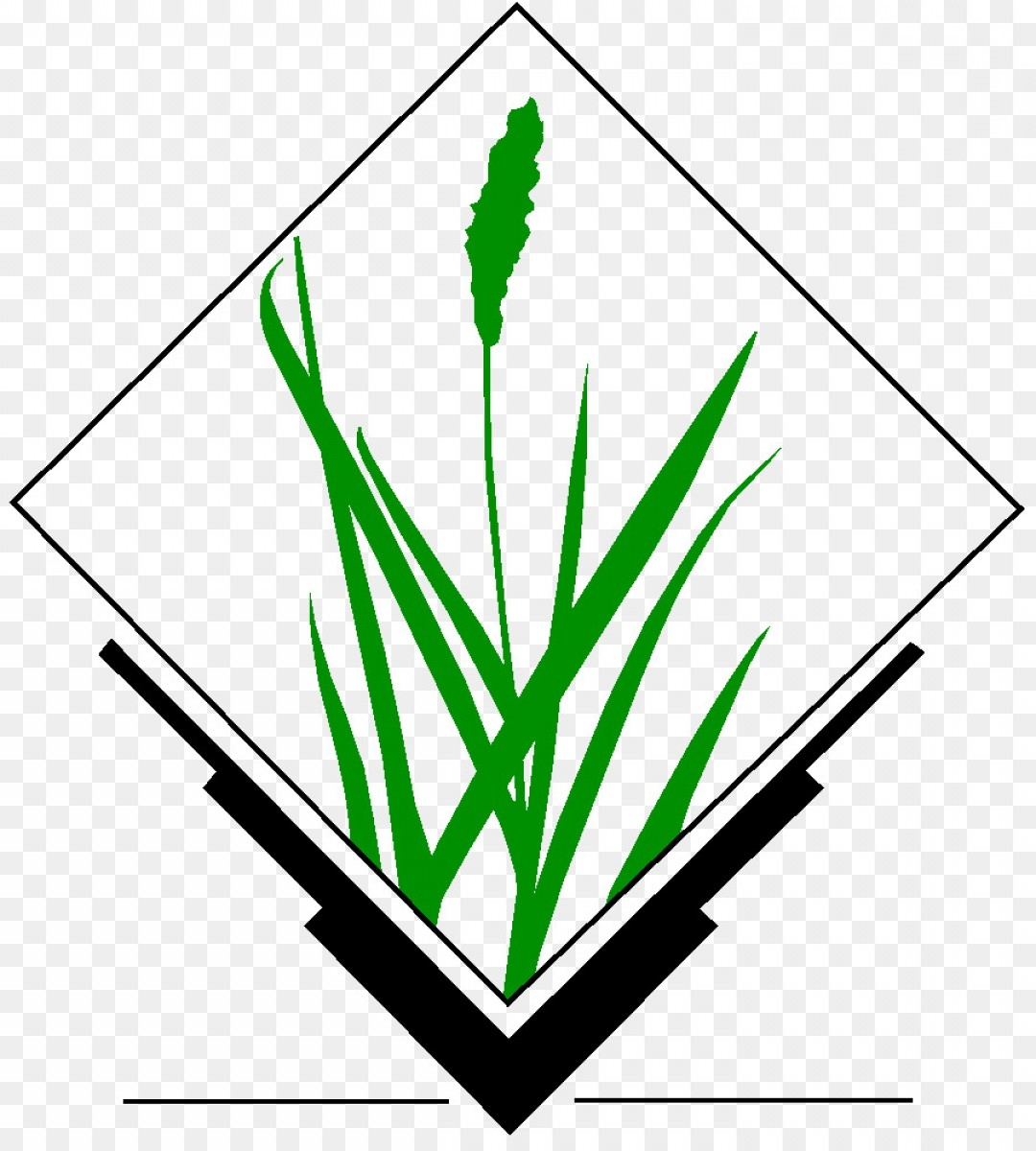 Geographic Leaf Vector: Png Grass Gis Geographic Information System Open Sourc