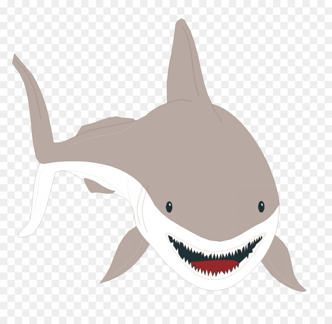Bull Shark Jaws Vector Art: Png Great White Shark Bull Shark Clip Art Tiger Shark