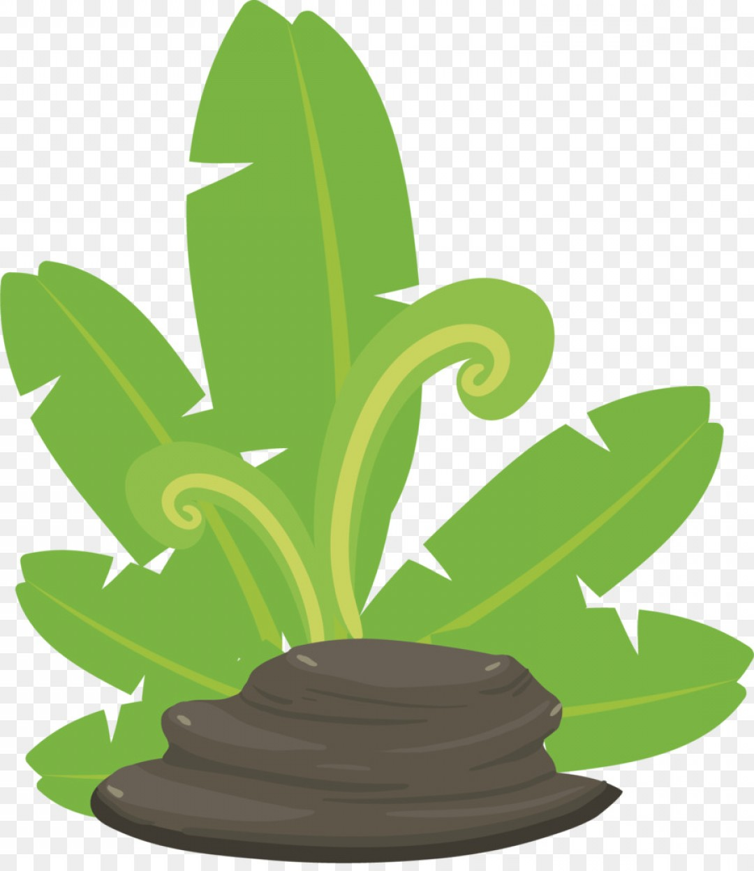 Chocolate Vector Plant: Png Green Leaf Plant Stone Vector