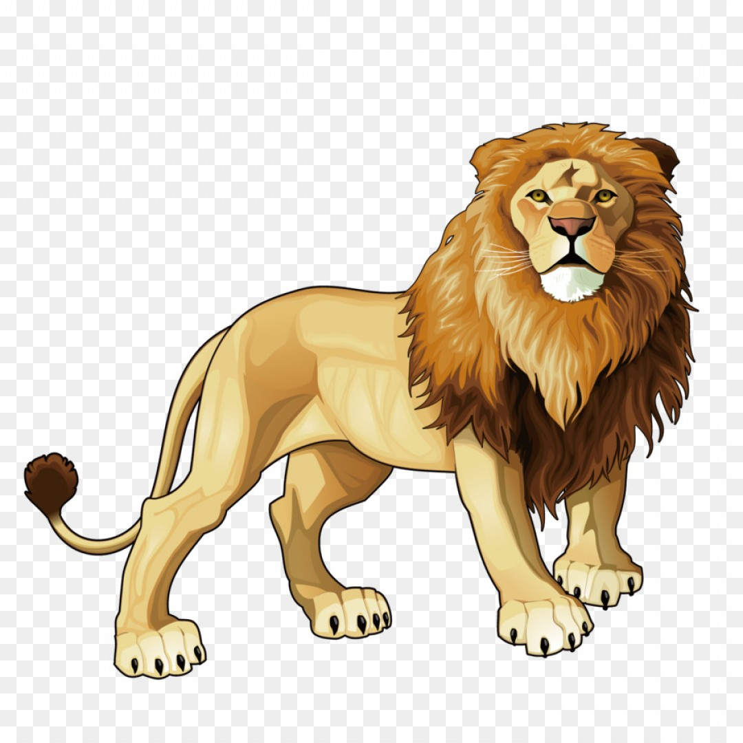 Nala Vector: Png Lion Tiger Jaguar Animal Cheetah Vector Lion King