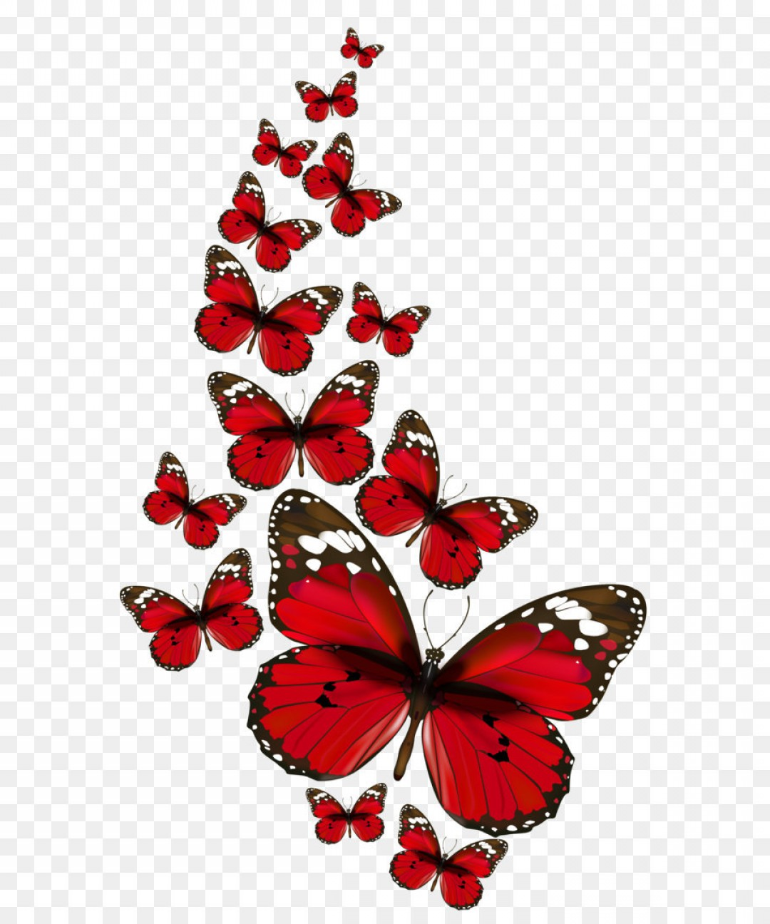 Real Butterfly Vector: Png Red Butterflies Vector Png Clipart