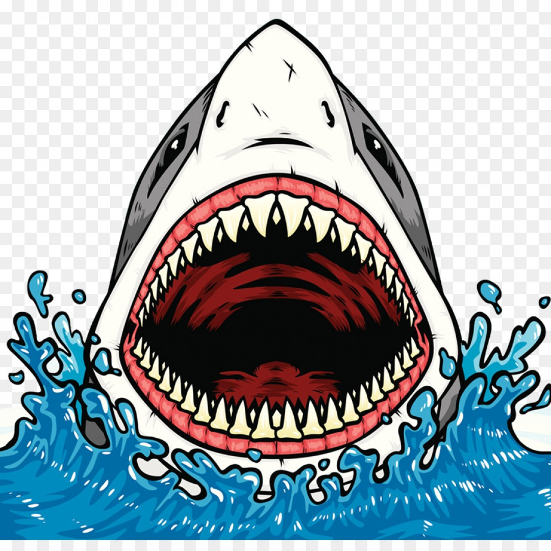 Bull Shark Jaws Vector Art: Png Shark Jaws Shark Tooth Clip Art Blood Basins Of Th