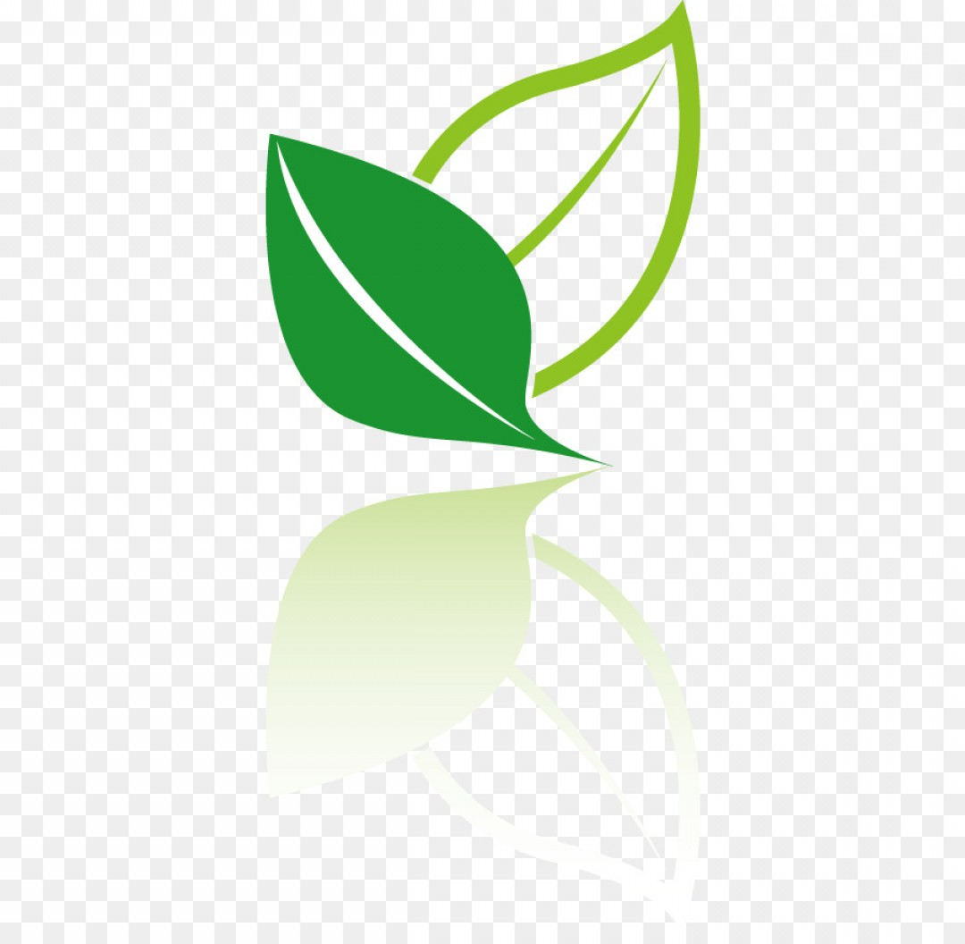 Vector Leaf Graphicd: Png Tea Logo Icon Vector Leaf Icon Environmental Desig
