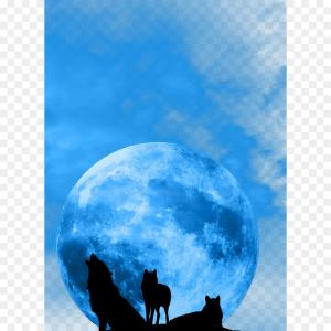 Full Moon Werewolf Vector 900: A Sleek Werewolf With A Clothing Store For Women Background