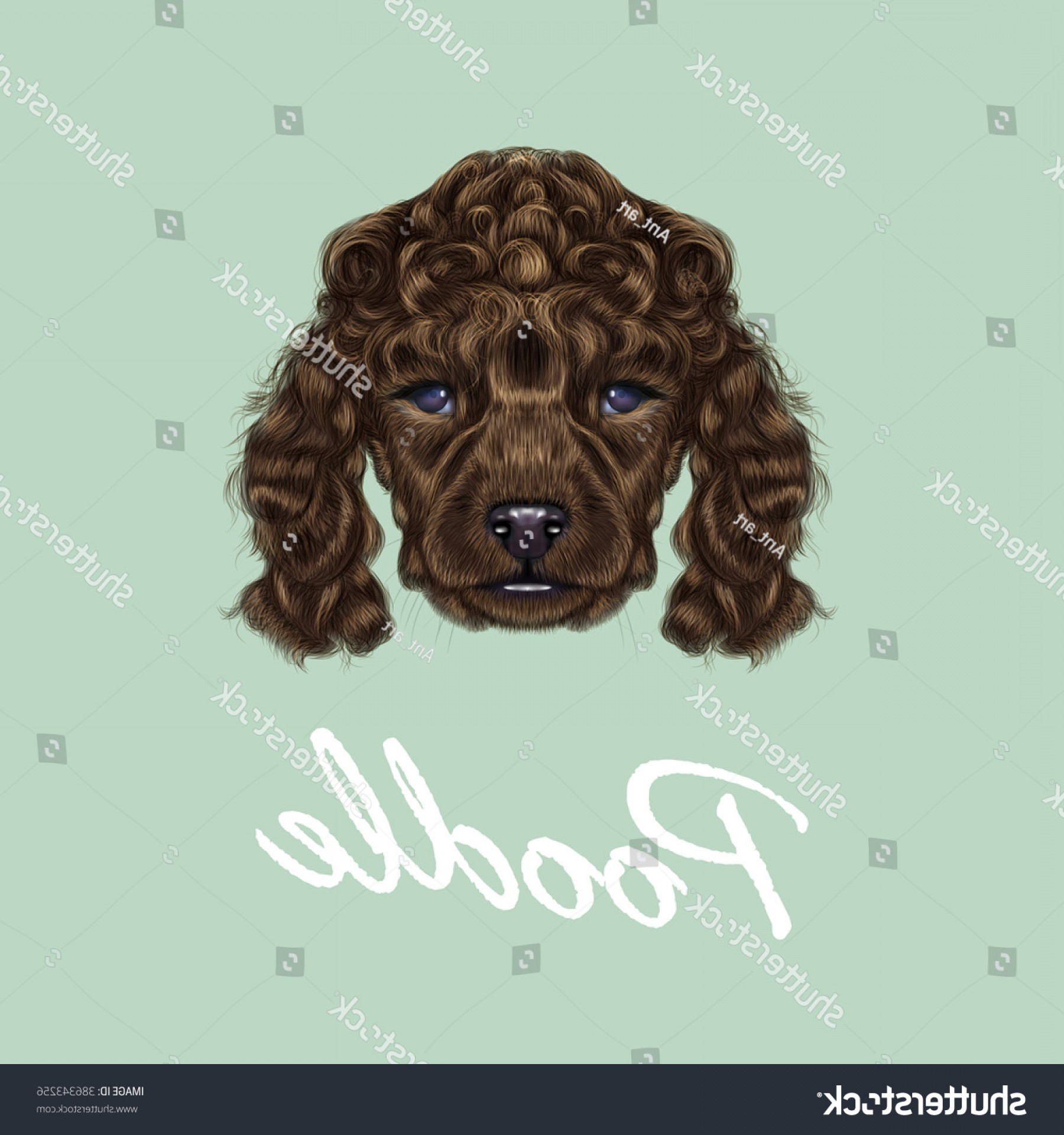 Double Boxer Dog Vector: Poodle Puppy Portrait Vector Illustrated Brown
