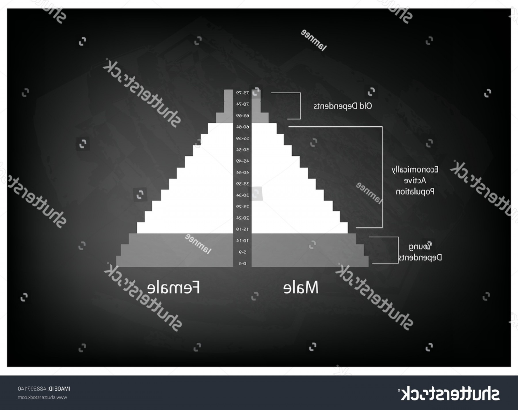 Expanding Population Icon Vector: Population Demography Illustration Detail Pyramids Chart