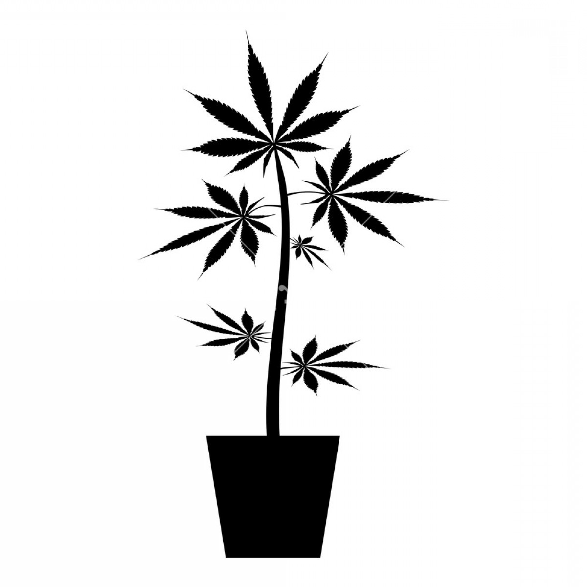 Black And White Vector Image Of Weed Plants: Pot Of Marijuana Cannabic In Pot Hemp Icon Black Color Vector Illustration Flat Style Simple Image Somhxnqpejtvg