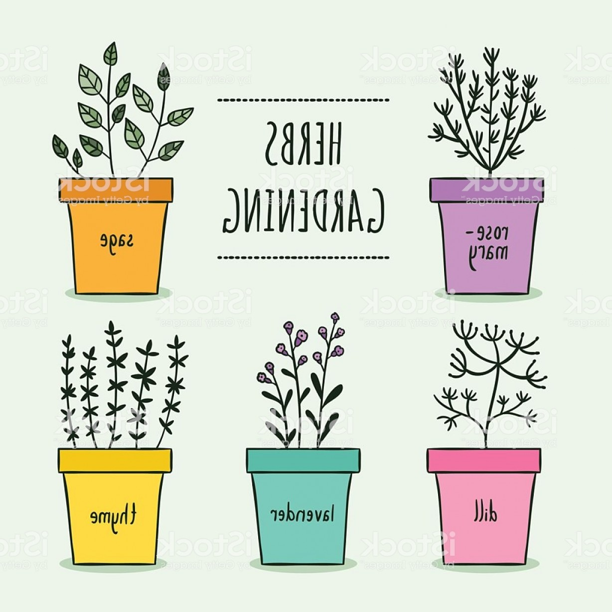 Flower Pot Vector Graphics: Pot Plants Hand Drawn Vector Set Cute Herbs Gardening Gm