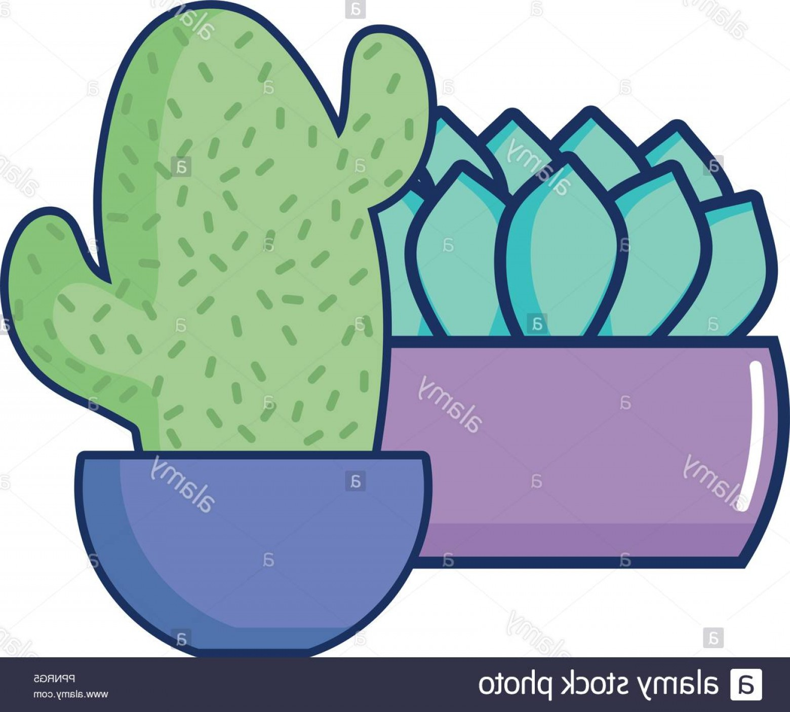 Potted Cactus Plant Vector: Potted Cactus And Plant Floral Decoration Vector Illustration Image