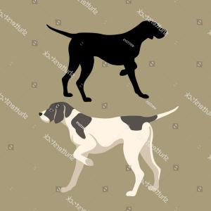 Pointer Dog Vector: Stock Illustration Pointer Dog Stylized Black Illustration Image