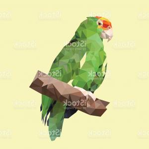 Abstract Vector Art Parrot: Polygonal Green Amazon Parrot Polygon Triangle Animal Bird Vector Gm
