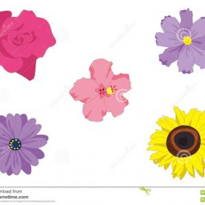 Trolls Flowers Vector: Poppy Clipart Free Vector