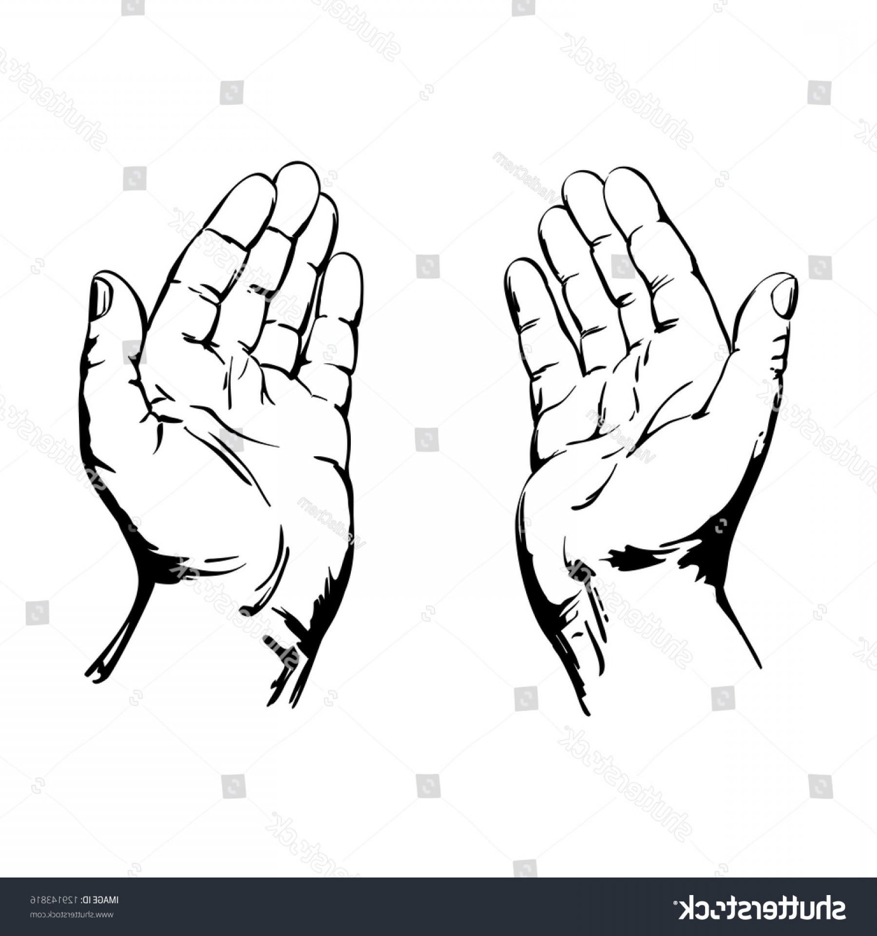 Praying Hands Vectors Shutterstock: Praying Hands Drawing Vector Illustration Realistic