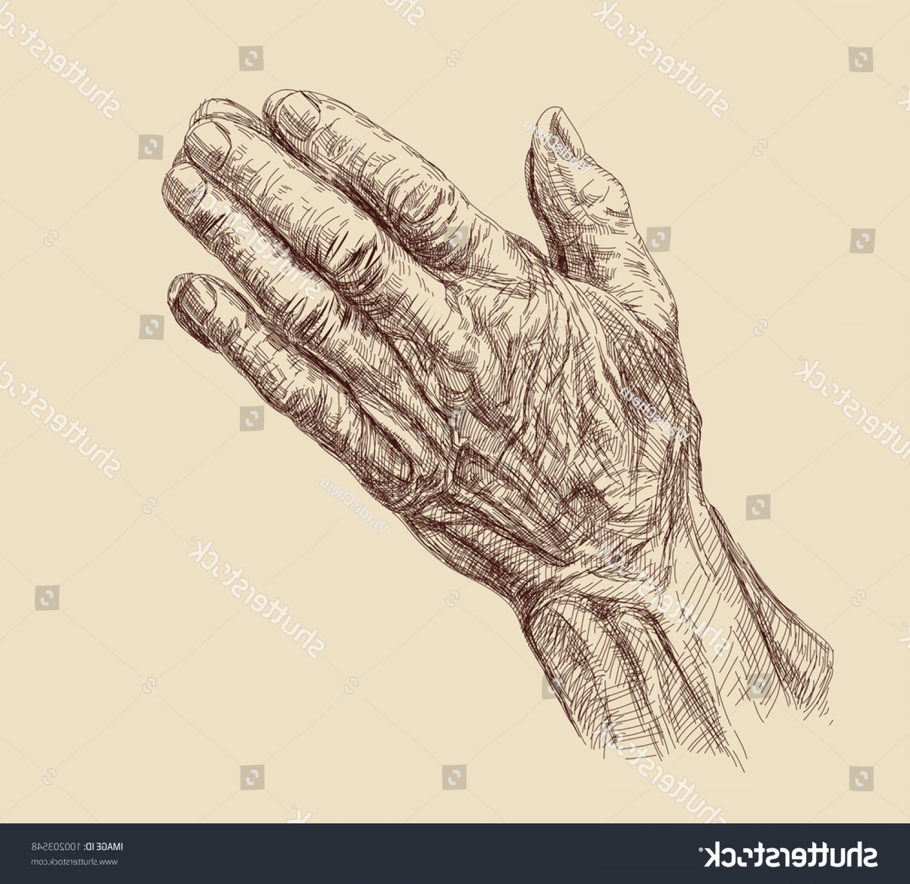 Praying Hands Vectors Shutterstock: Praying Hands Drawing Vector Illustration