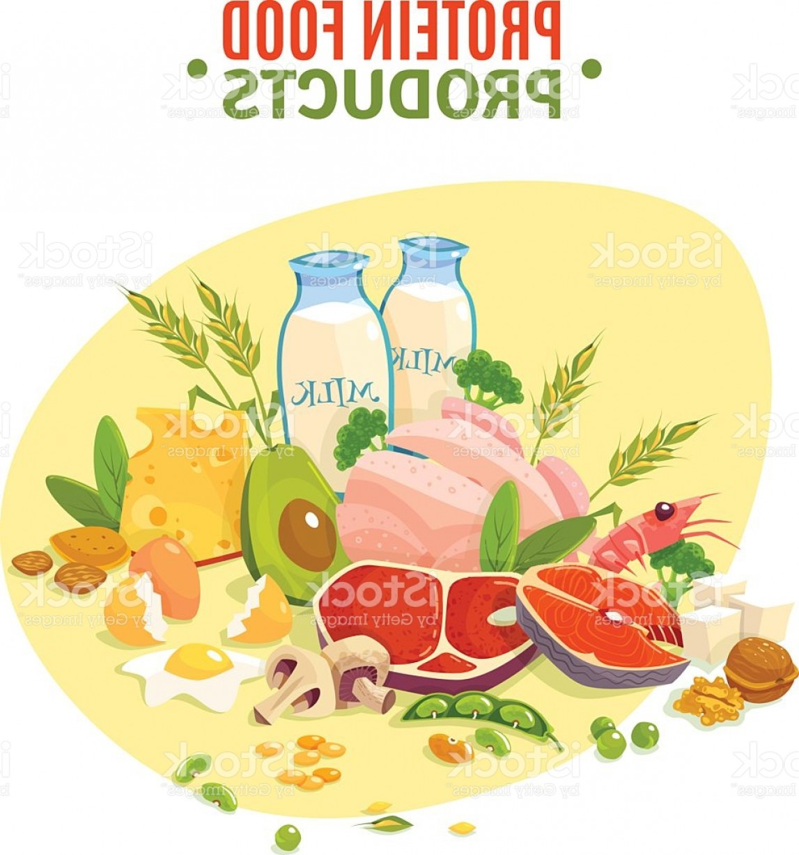Vector Protein: Protein Food Products Flat Illustration Poster Gm