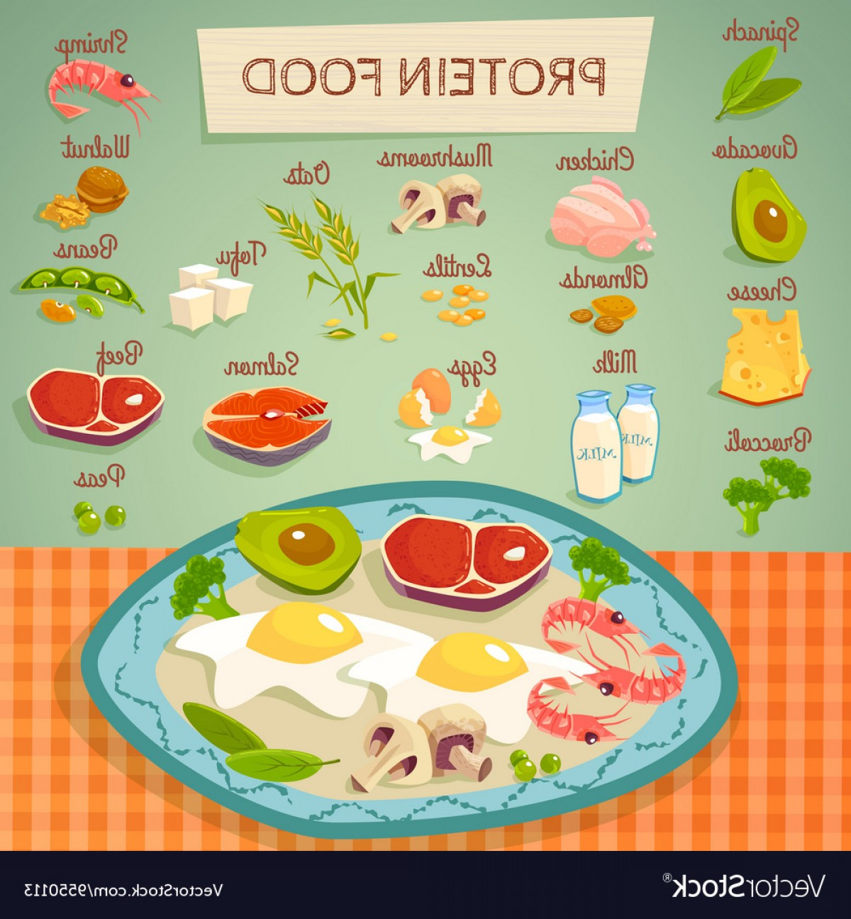 Vector Protein: Protein Food Raw And Cooked Collection Vector