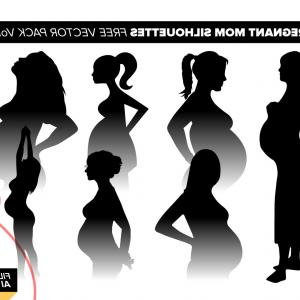 Pregnant Vector Art: A Pregnant Woman Holding Her Belly Vector Art Image