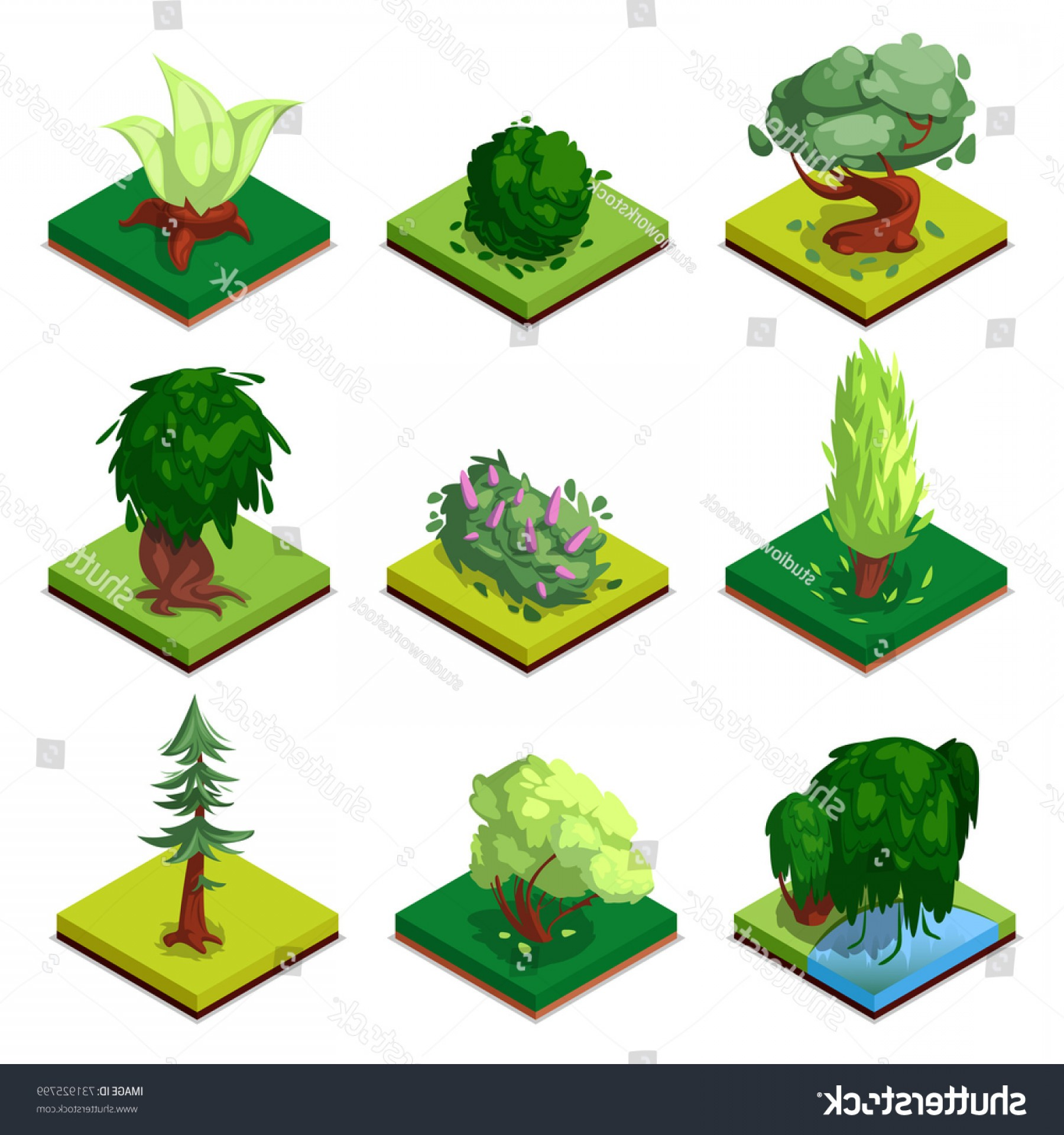 Vector Water Willow: Public Park Decorative Trees Isometric D