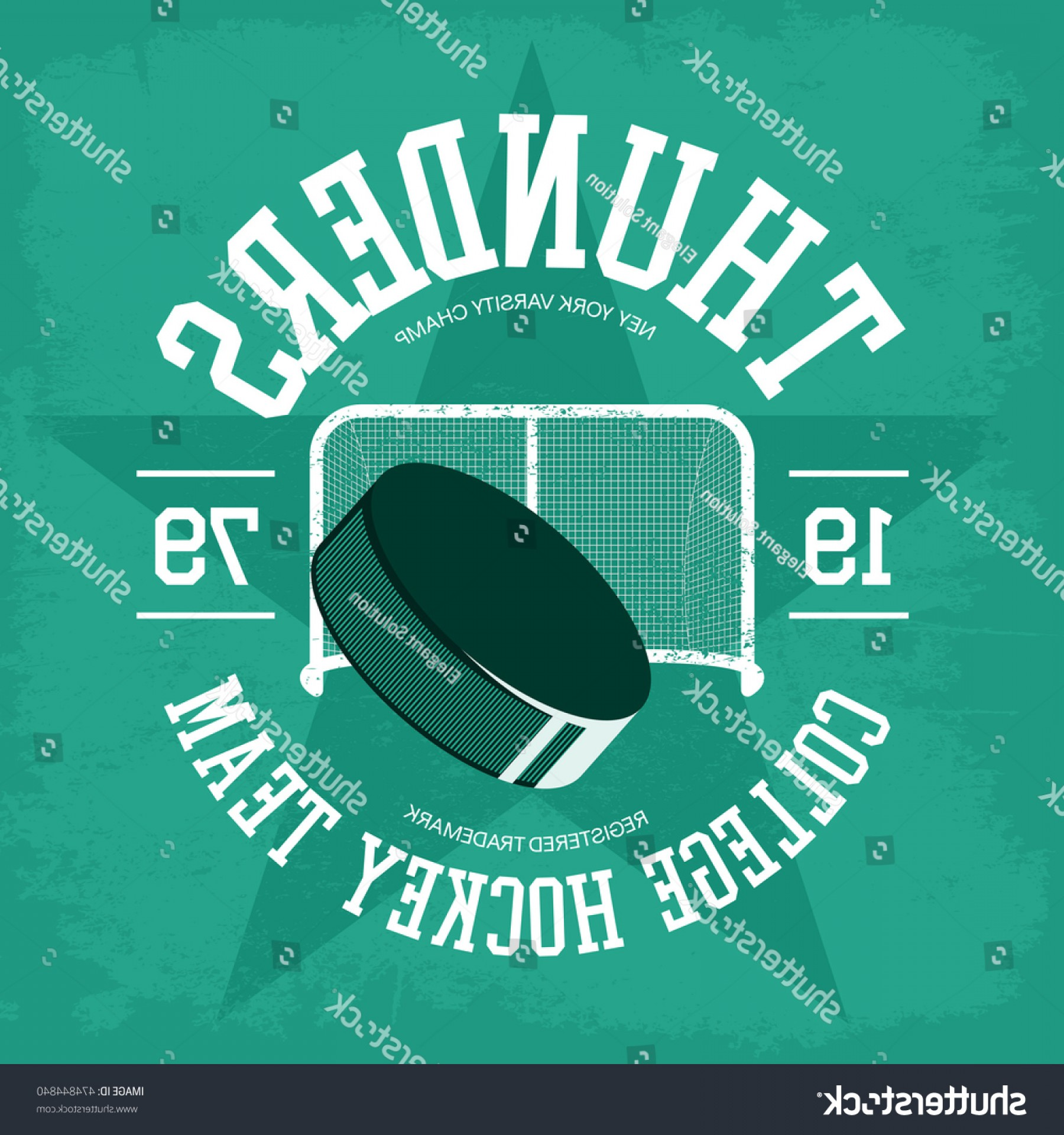Vector Professional Goal: Puck Ice Hockey Front Goal College