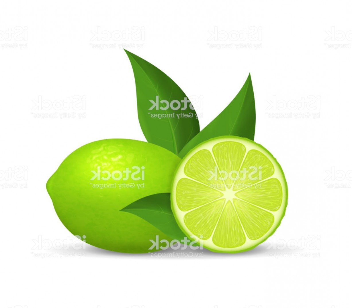 Lime Wedge Vector Art: Realistic Detailed D Whole Green Fruit Lime And Slice Vector Gm