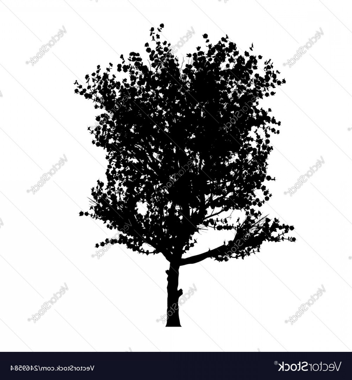 Apple Tree Vector Black: Red Apple Tree Silhouette Vector