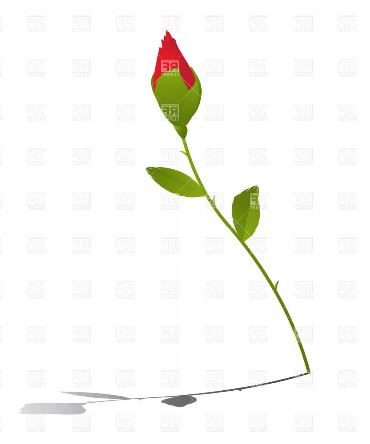 Bud Vector: Red Rose Bud Vector Clipart