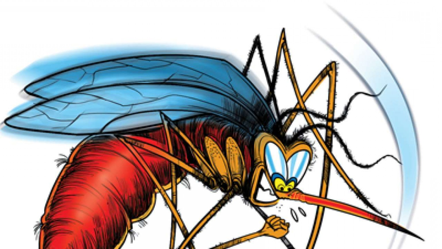 Vector-Borne Infection: Report Bbmp Intensifies Vector Borne Disease Control Measures In City