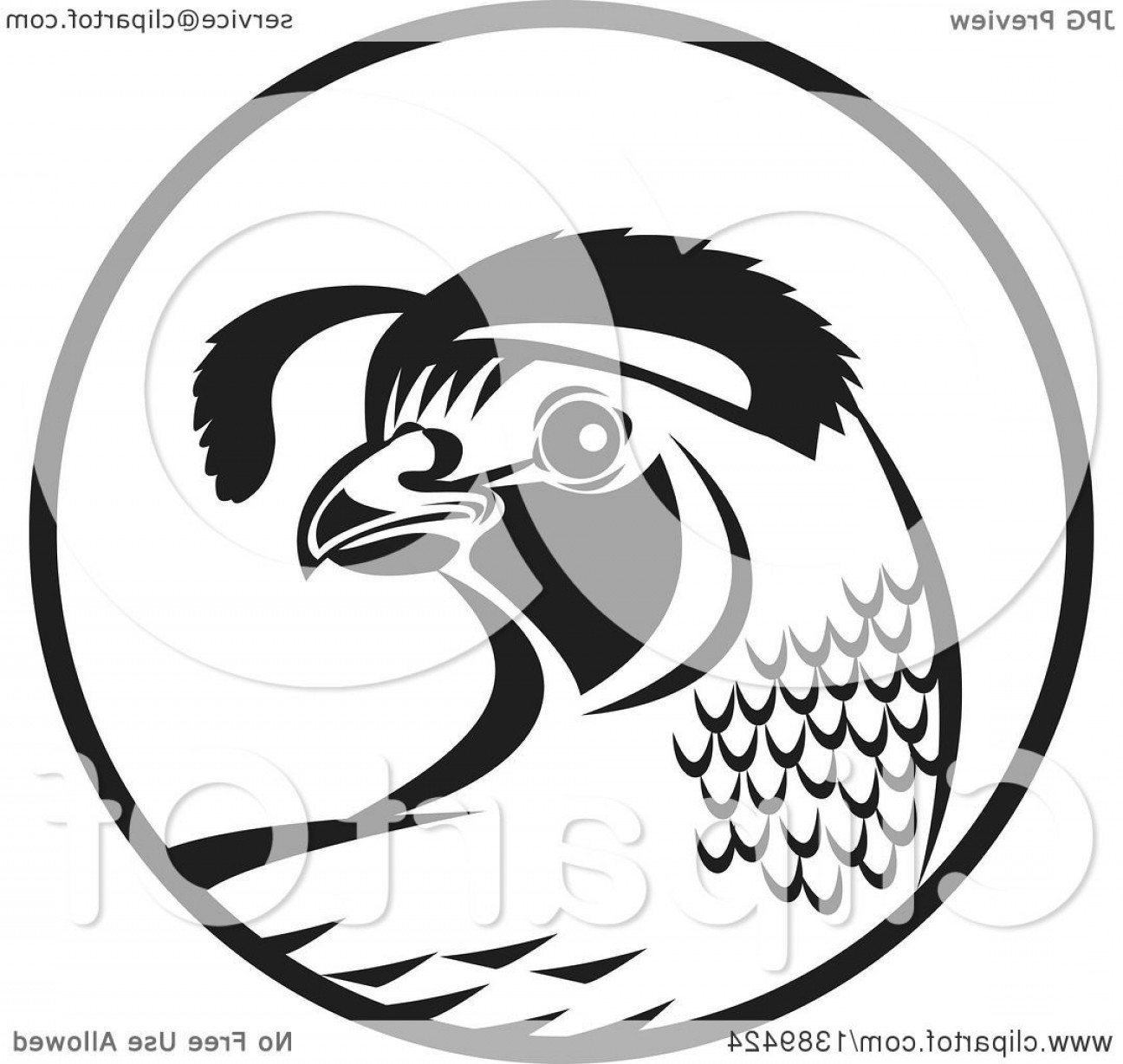 Quail Vector Art: Retro Black And White Quail Bird In A Circle