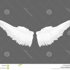 Bean Vector Wings: Realistic Elegant White Angel Wings Grey Background Love Lightness Romantic Innocence Freedom Symbol Vector Illustration Image