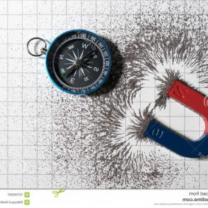 Vector Graphs Physics 280 Angle: Red Blue Horseshoe Magnet Physics Magnetic Compass Iron Powder Field White Paper Graph Background Scientific Image