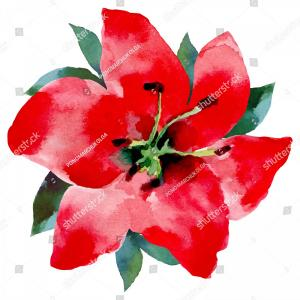 Get For Me Not Flower Watercolor Vector Art: Red Flower Watercolor Painting Vector Flowers
