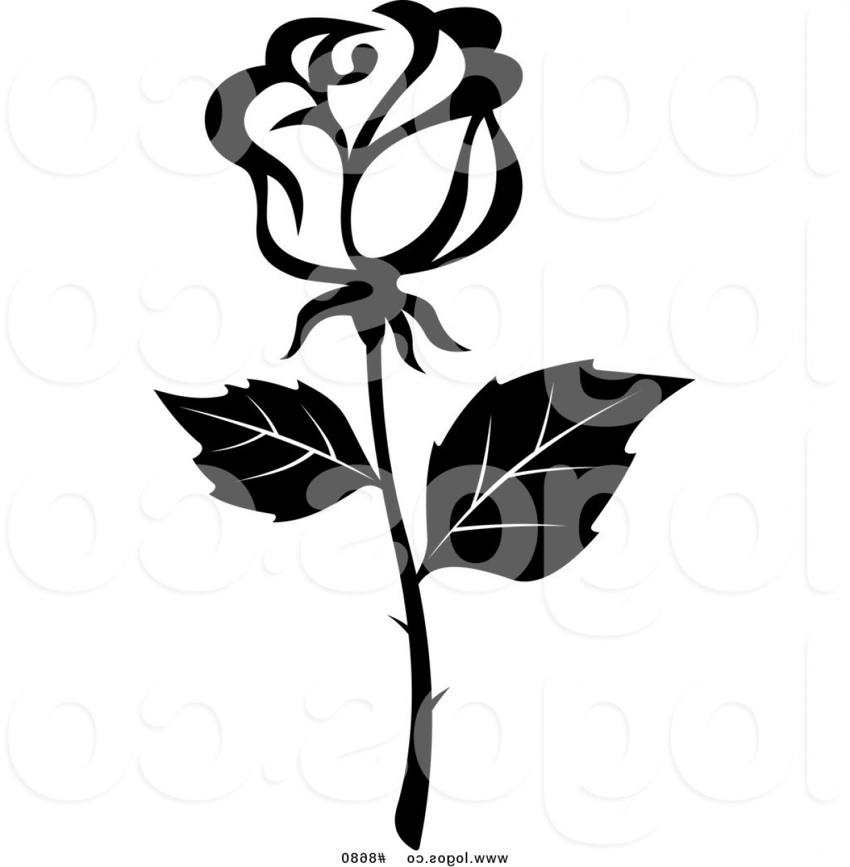 Roses Logo Vector: Royalty Free Clip Art Vector Black And White Rose With Thorns Logo By Vector Tradition Sm