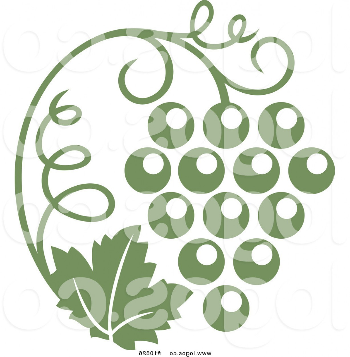 Vine Vector Graphics: Royalty Free Clip Art Vector Logo Of An Olive Green Grape Vine And Bunch By Vector Tradition Sm