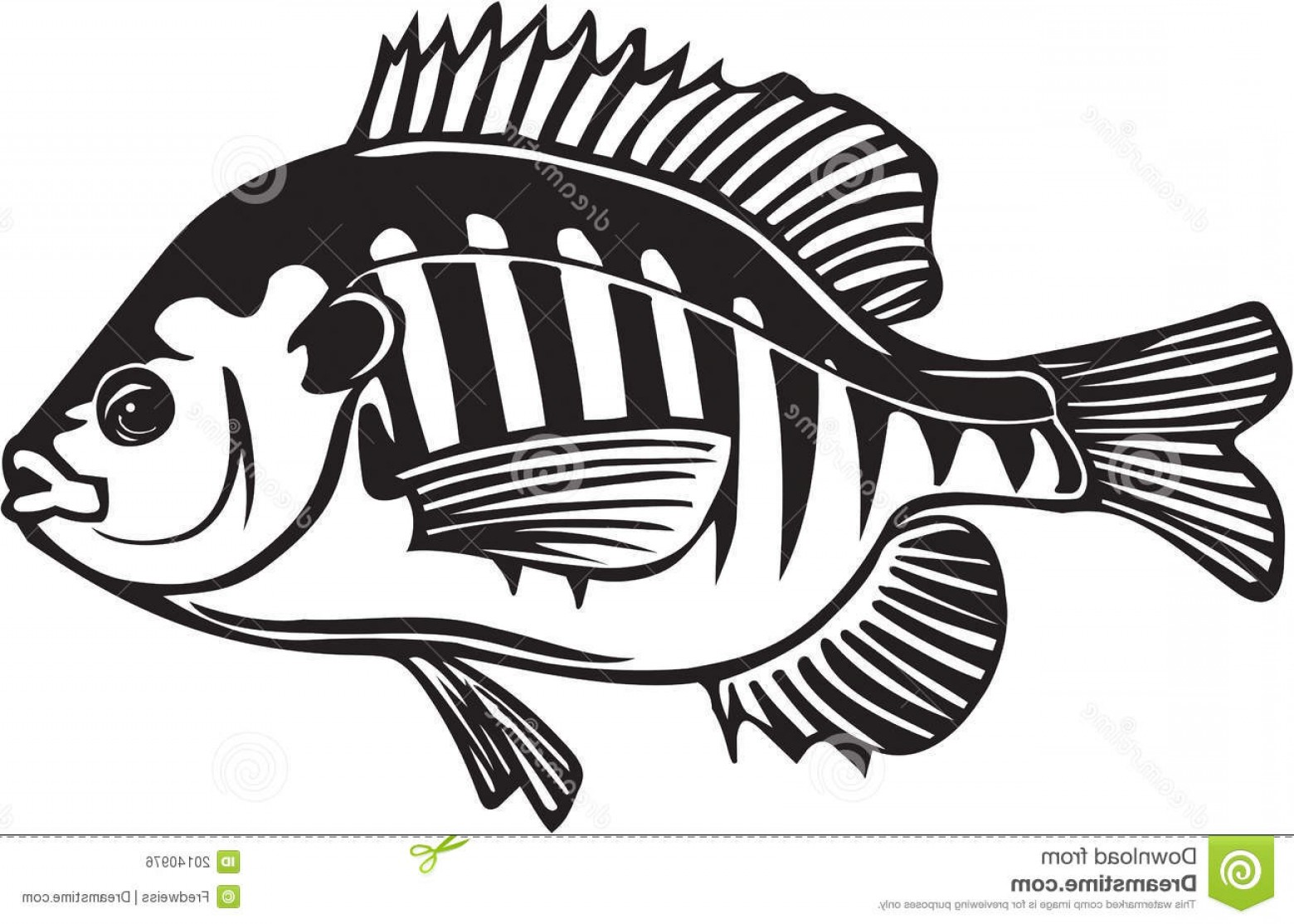 Vector Fishing Decals: Royalty Free Stock Image Blue Gill Illustration Image