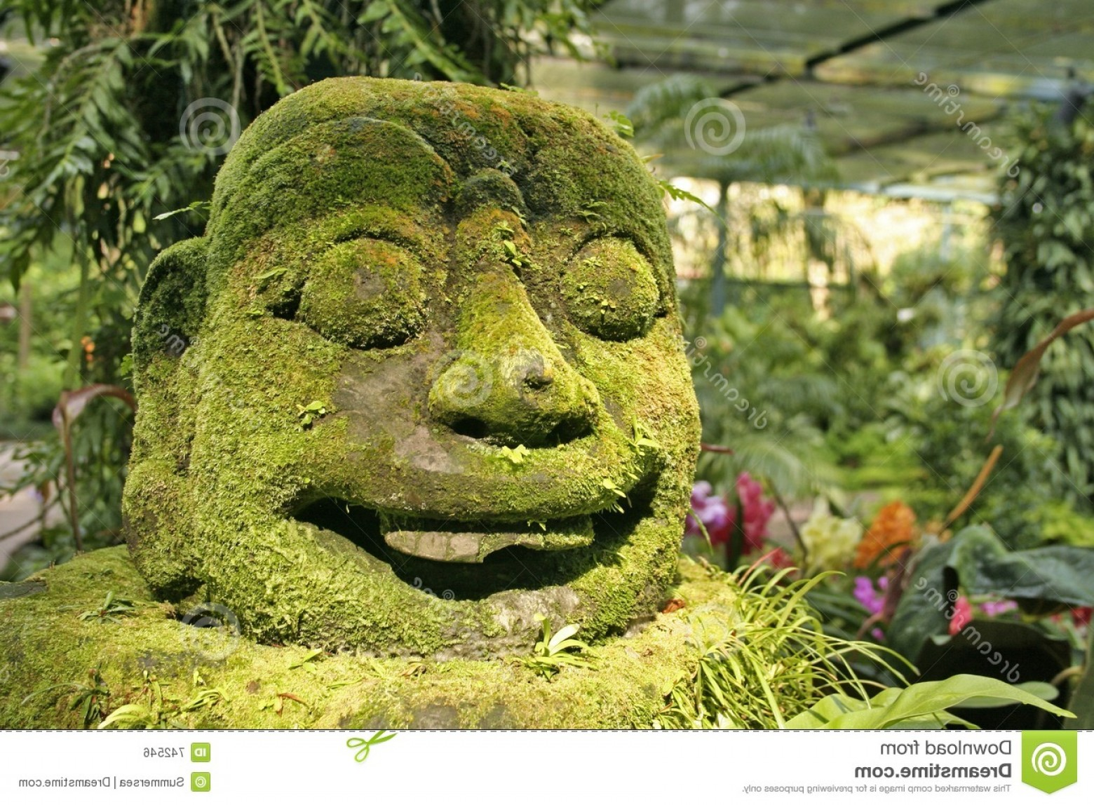 Ancient Jungle Statue Vector Images: Royalty Free Stock Image Jungle Head Statue Image