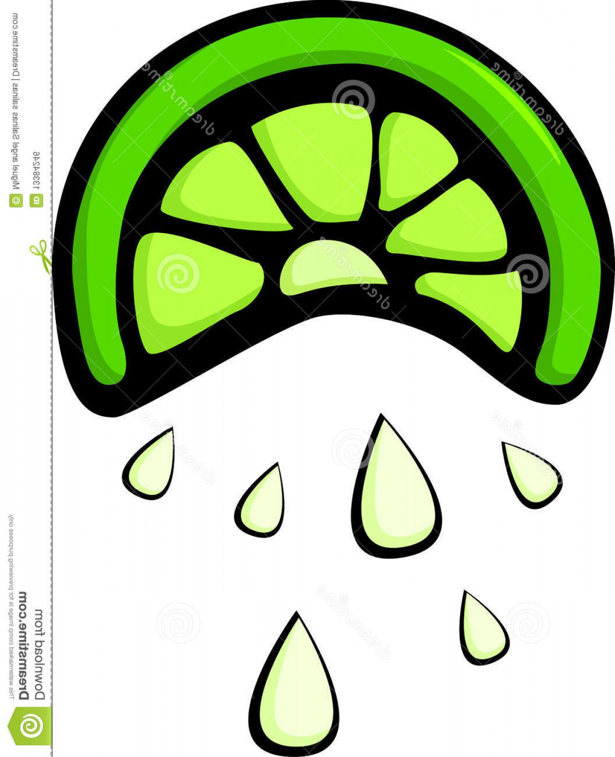 Lime Wedge Vector Art: Royalty Free Stock Image Squeezed Lemon Slice Vector Illustration Image