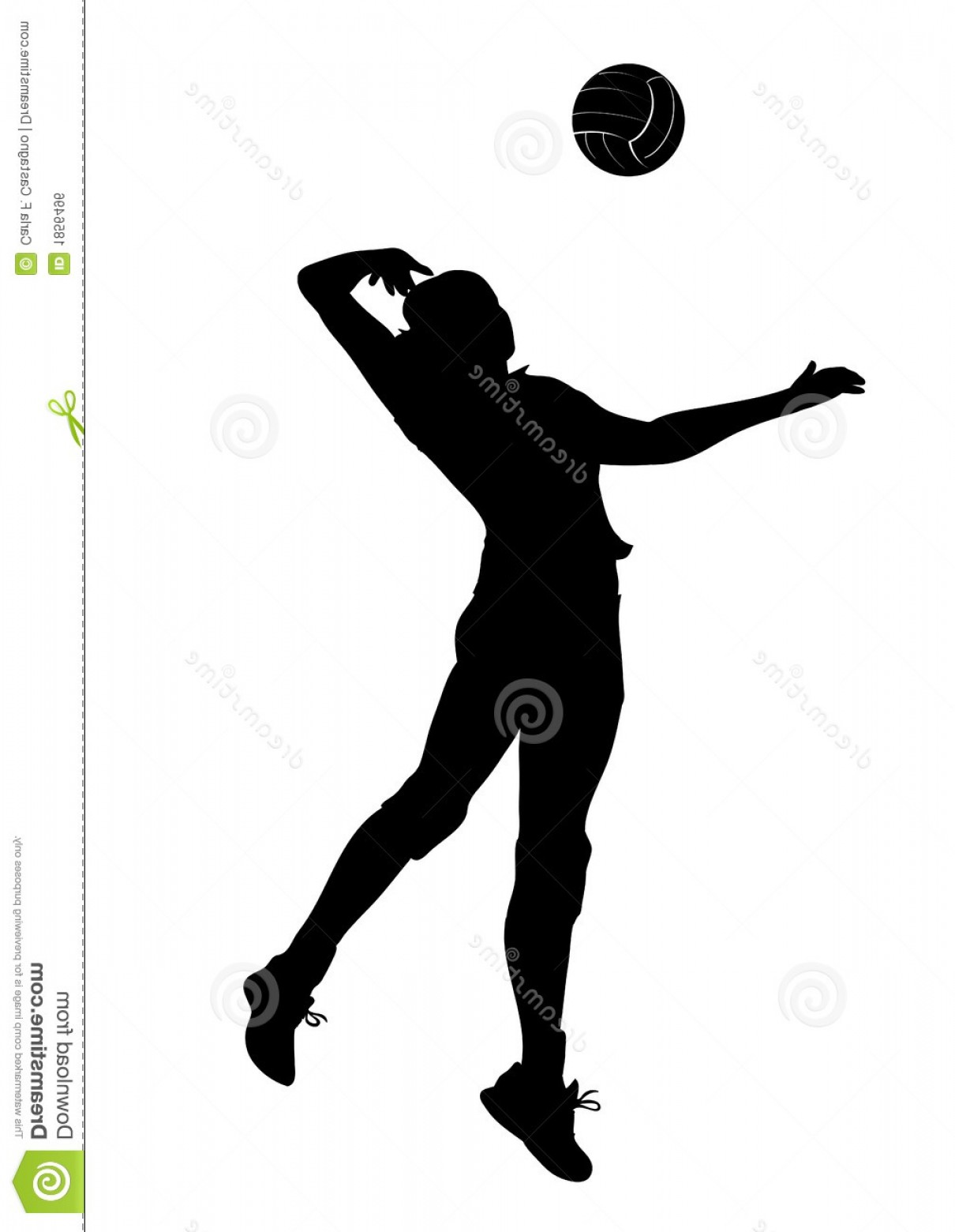 Volleyball Player Vector: Royalty Free Stock Image Volley Player Silhouette Woman Image
