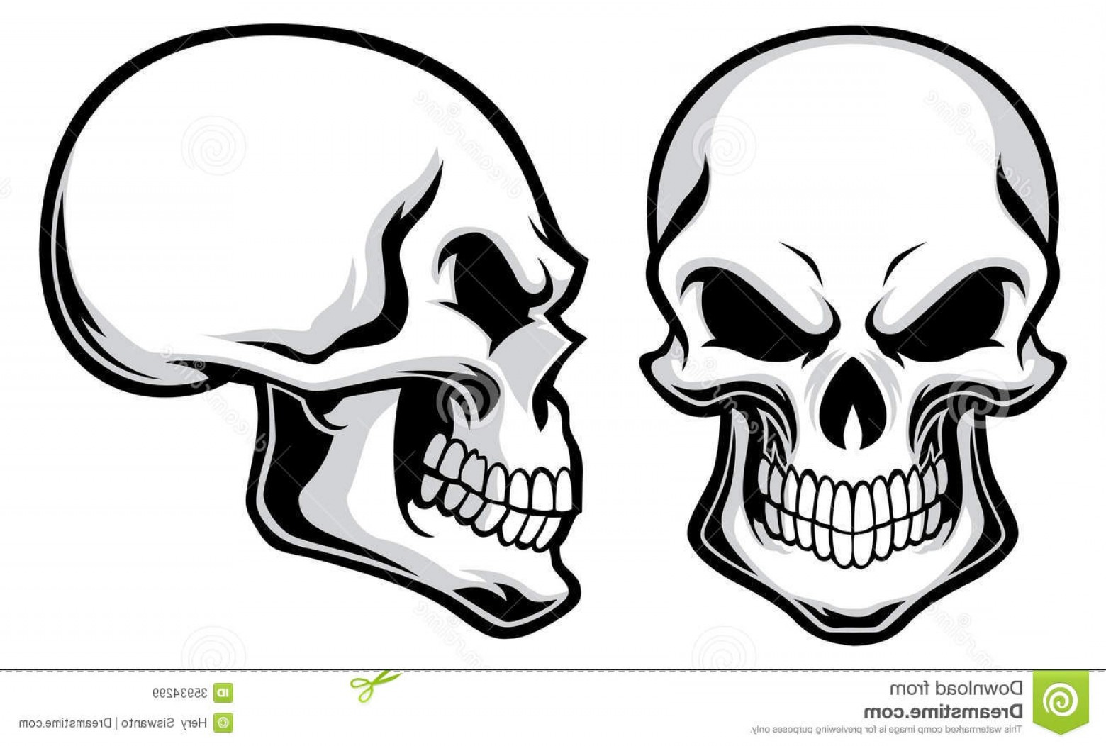 Cool Skull Vector: Royalty Free Stock Images Cartoon Skulls Vector Separated Easy To Edit Image