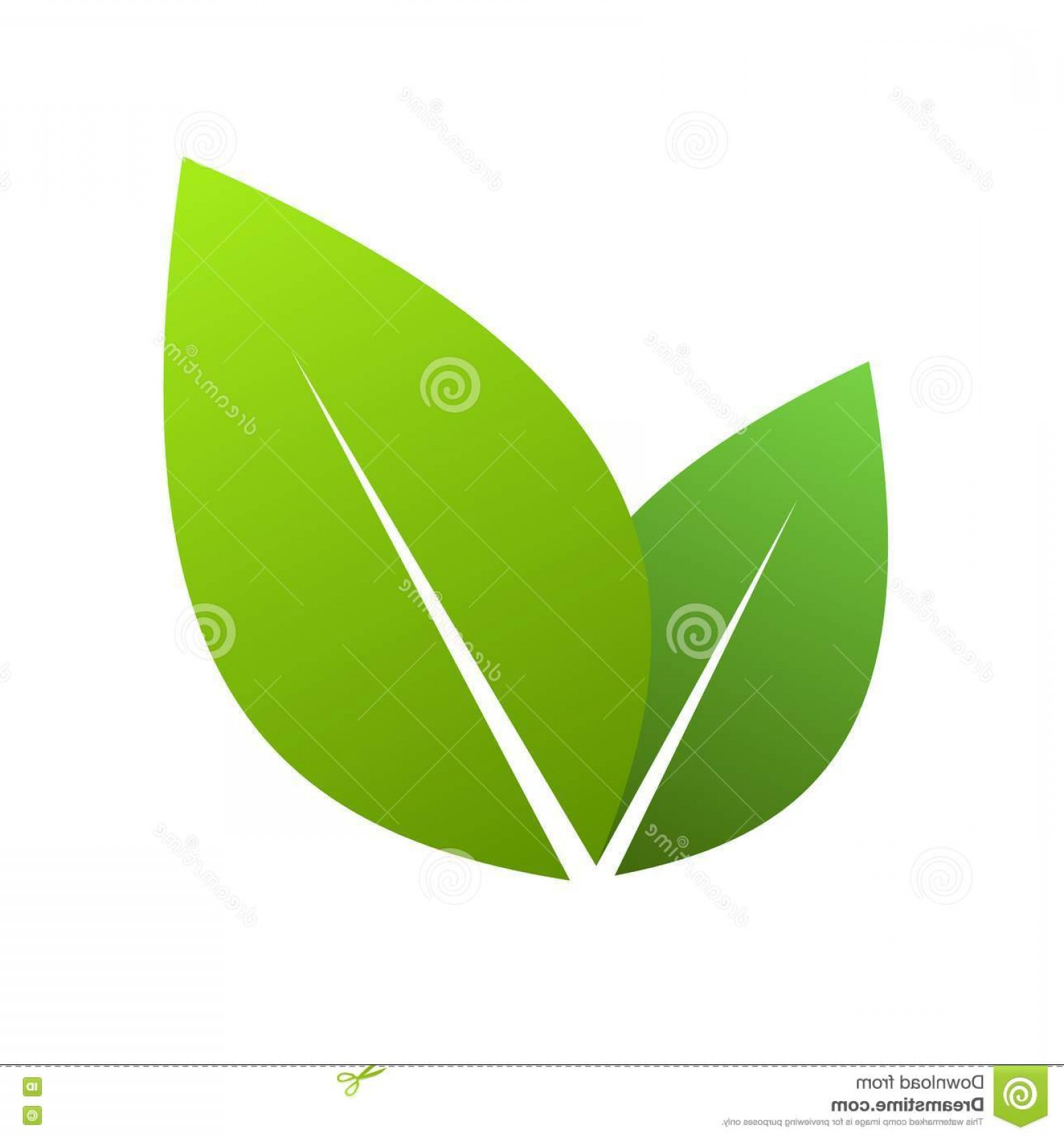 Tea Leaf Vector Art: Royalty Free Stock Images Green Leaves Vector Illustration Ecology Concept Icon Glossy Image