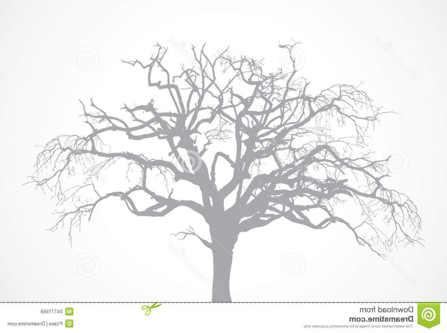 Oak Tree Silhouette Vector Graphics: Royalty Free Stock Images Vector Bare Old Dry Dead Tree Silhouette L Leaf Oak Crown Image
