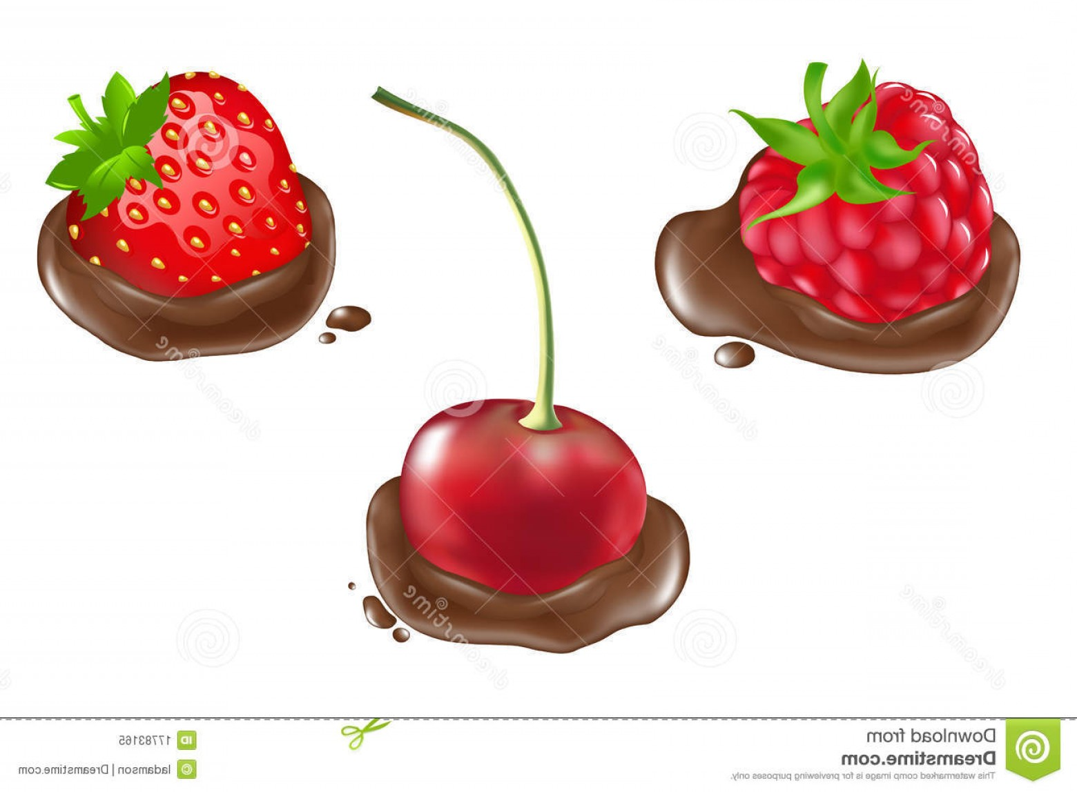 Chocolate Clip Art Vector: Royalty Free Stock Photo Berries Chocolate Vector Image