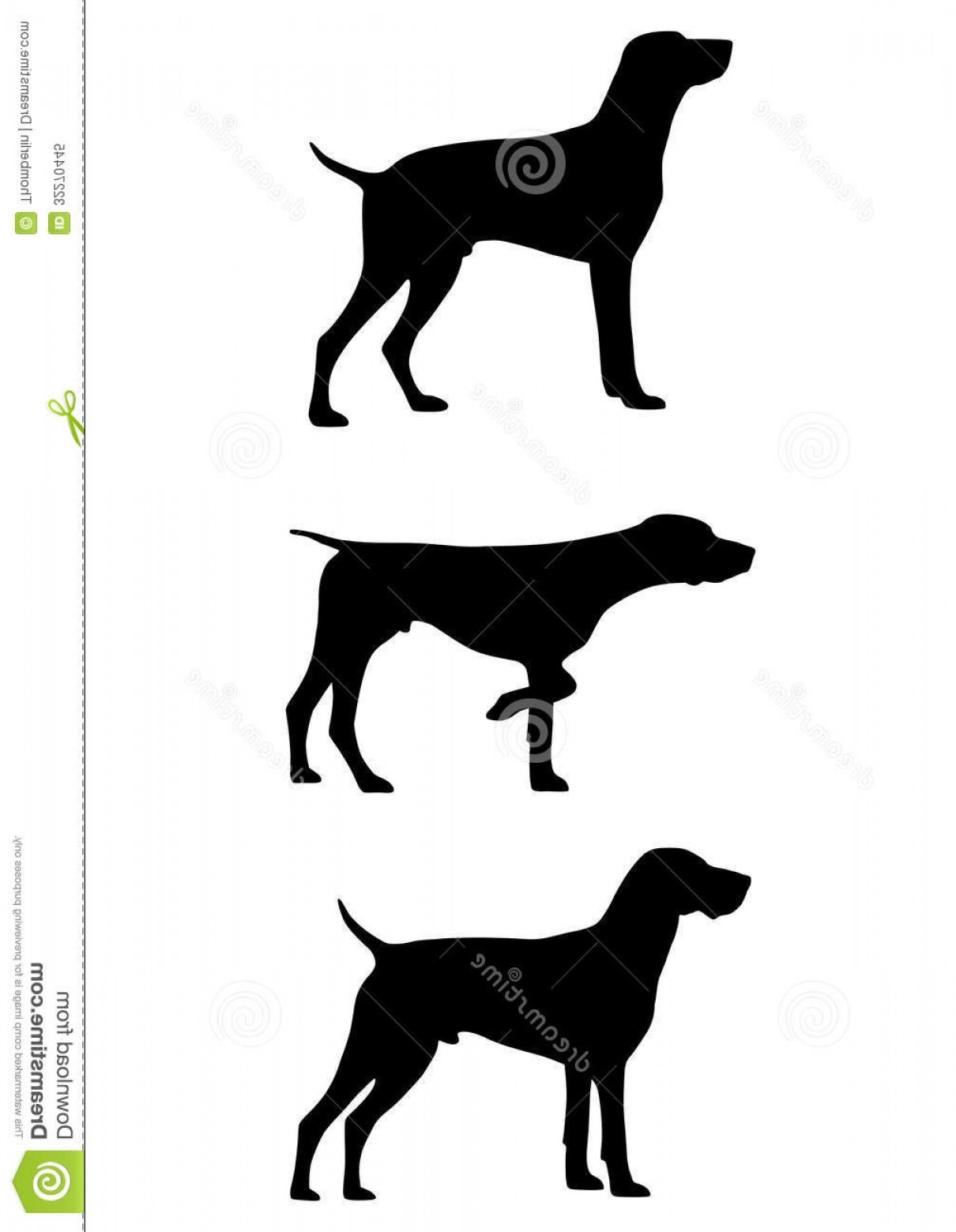 Pointer Dog Vector: Royalty Free Stock Photo German Shorthaired Pointer Gsp Breed Dog Developed Th Century Germany Hunting Image