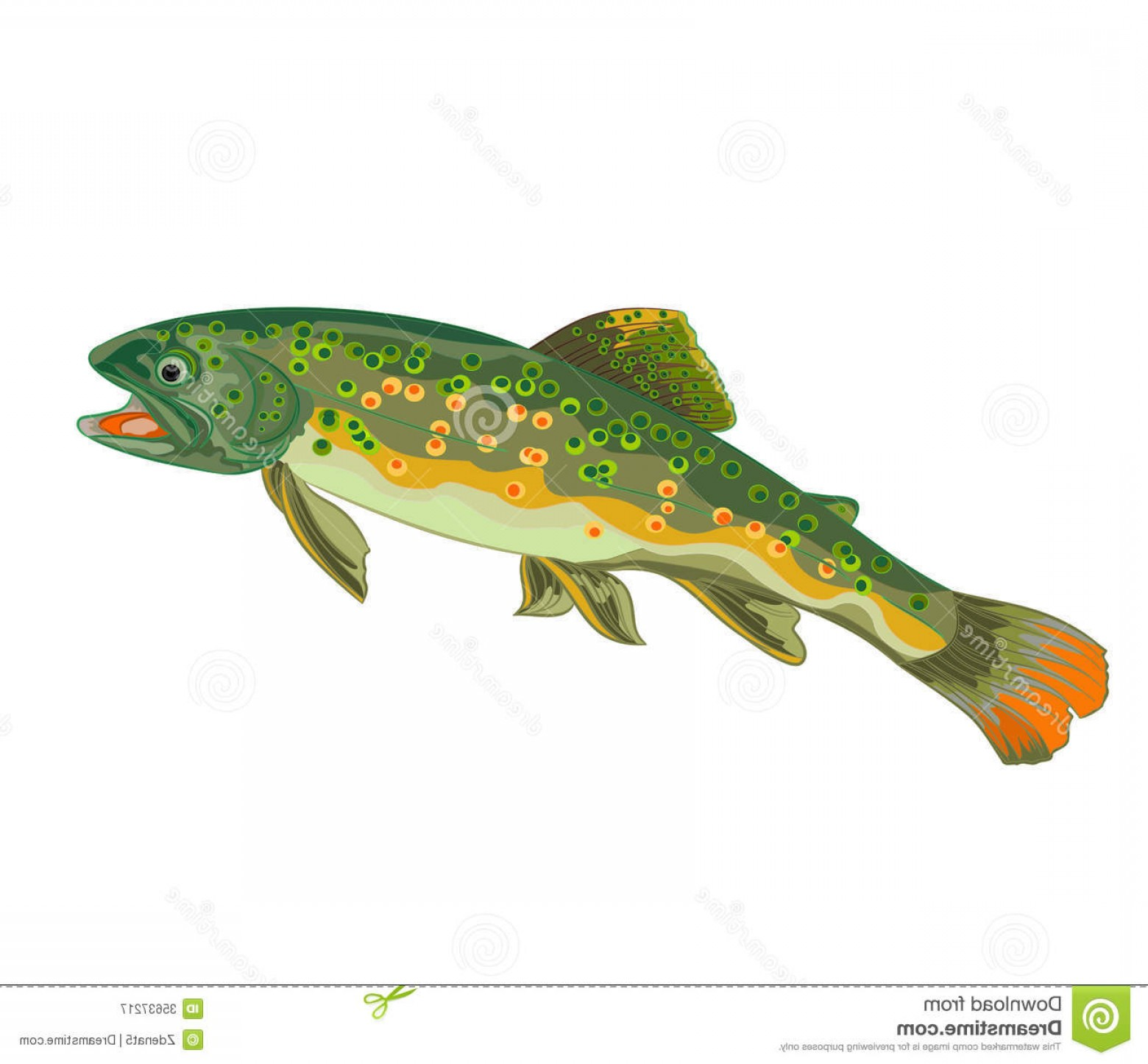 Speckled Trout Vector: Royalty Free Stock Photography Brook Trout Fish Jumping Beauty Wildness Vector Illustration Image