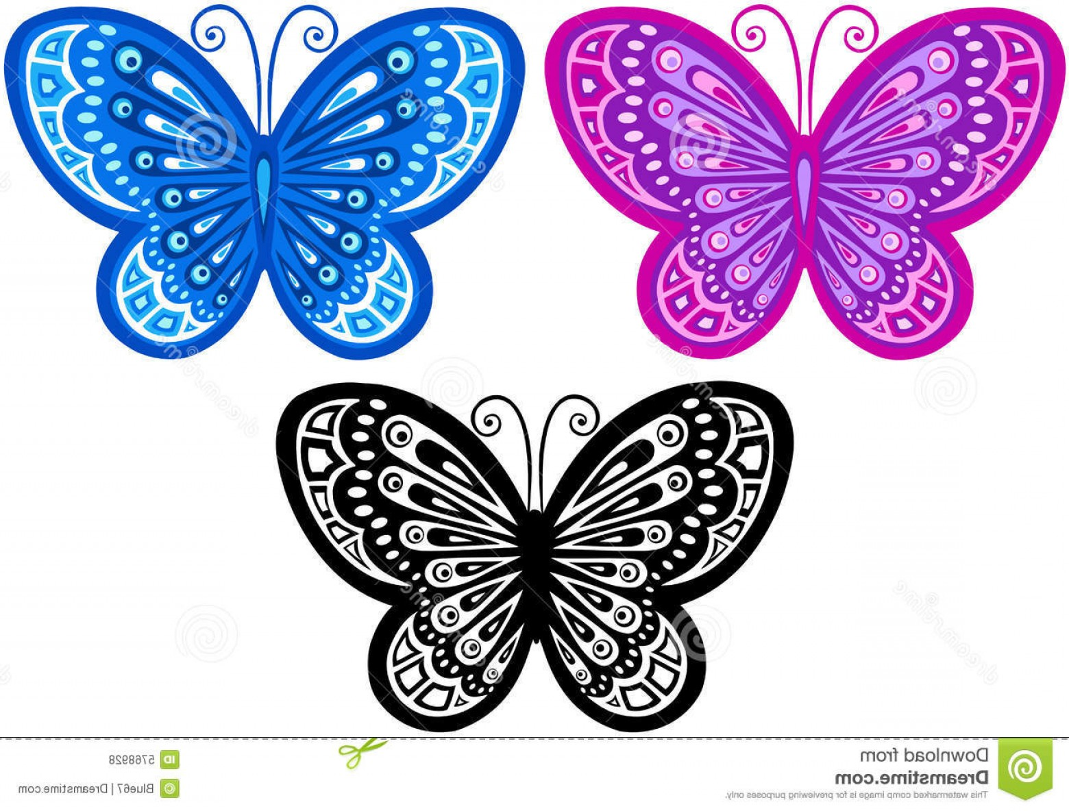 Butterly Vector: Royalty Free Stock Photos Butterfly Vector Illustration Image