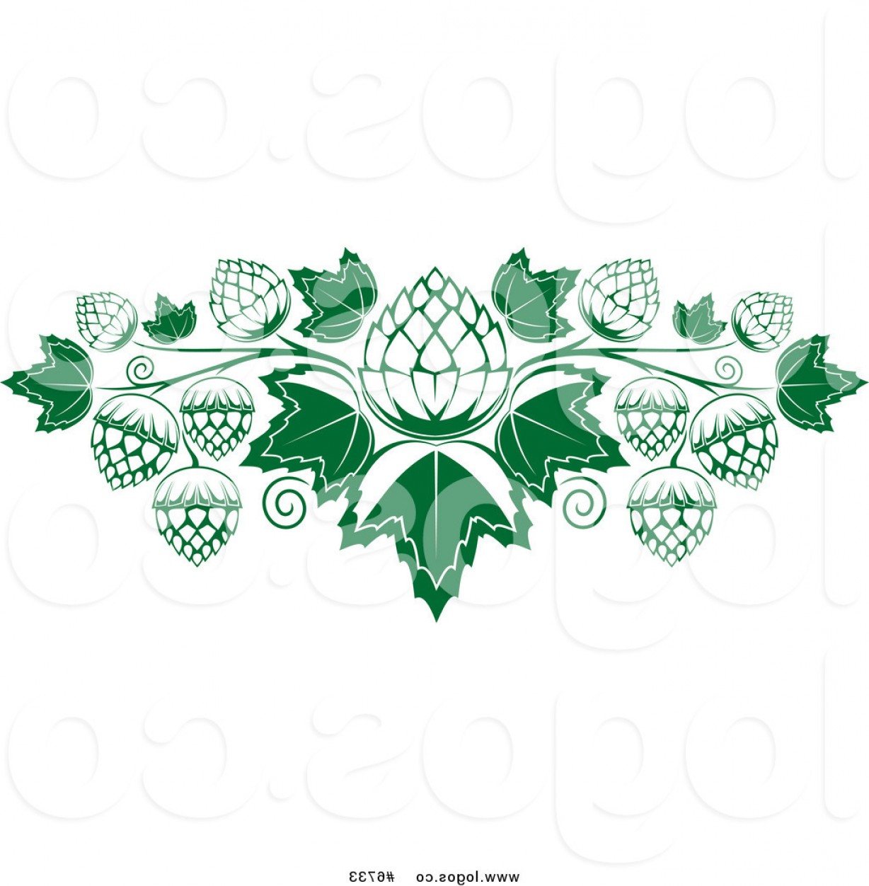 Beer Hops Vector: Royalty Free Vector Of A Hops And Leaves Logo By Vector Tradition Sm