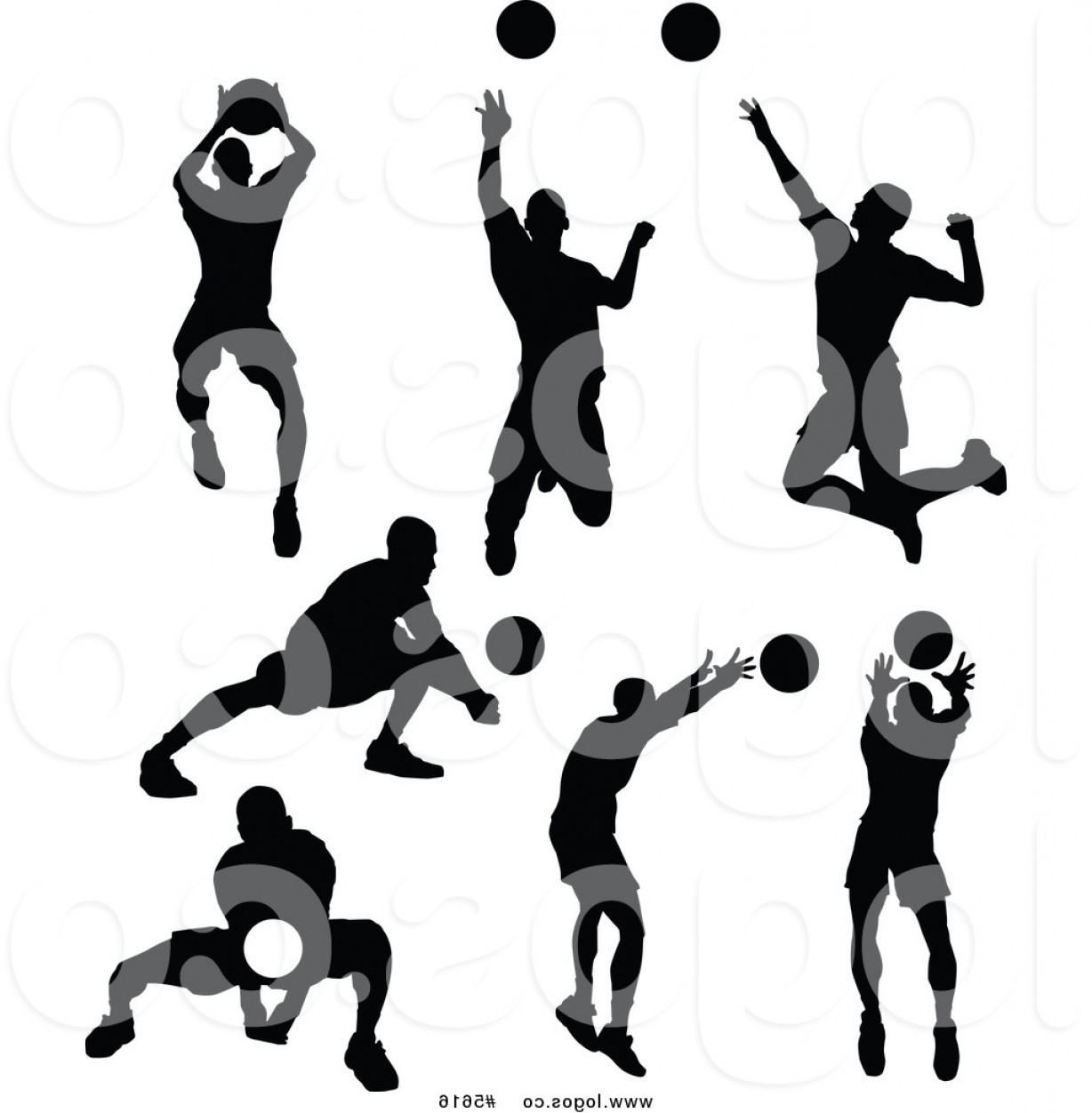 Volleyball Player Vector: Royalty Free Vector Of Logos Of Silhouetted Male Volleyball Players By Chromaco