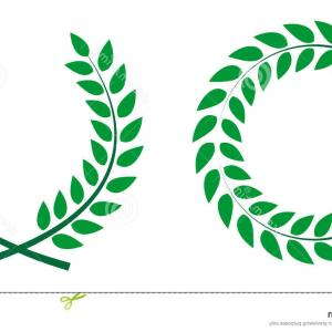 Award Vector Leaves: Cup Champion With Laurel Leaves In Gold Award Gm